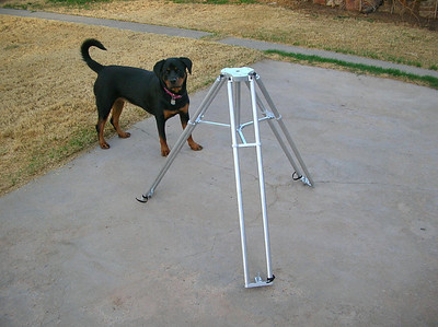A view of the adjustable leveling screws.  These are machined to a point for installation repeatability, but also accept swivel feet for a broader load spread.  That's Beckett (our pure-bred Rottweiler) at a year and a half.  She loves spending time outside doing astronomy, but usually gives-up at 11:30pm or so.