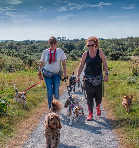 Female dog walker 2.jpg