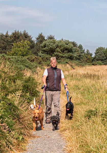 Male dog walker.jpg