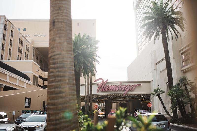 Vegas-0022