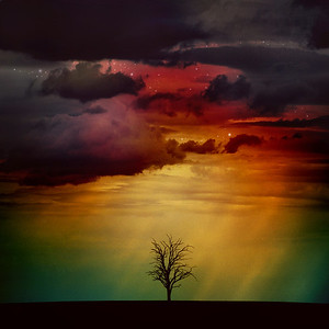 The Nebula Tree