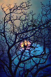 Spooky Bushfire Sunset