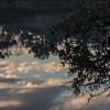 Early Morning Ripples ~ Huron River