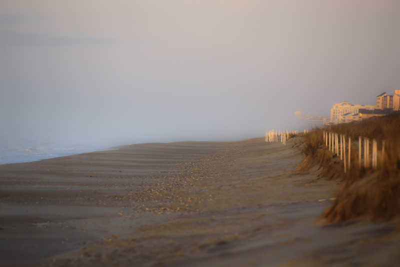 Morning Stroll ~ Southern Outer Banks