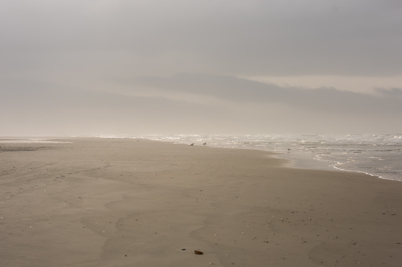 Sweep of Sand ~ Southern Outer Banks