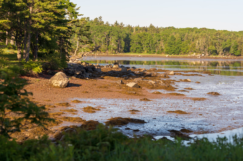 Low Tide ~ Winslow Cove, Maine Coast