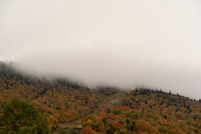 Fog rolling down over the colored trees �