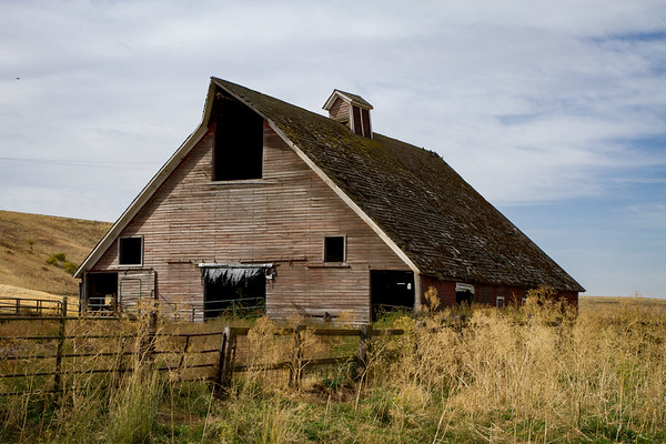 Barn in the Palouse ~ Whitman County
