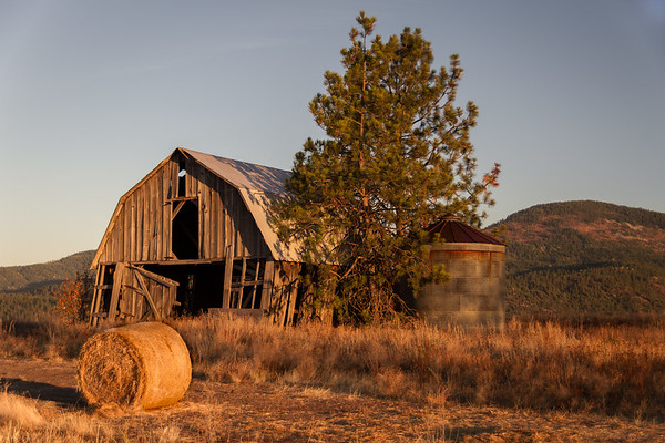 Barn ~ Rathdrum, ID