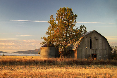Barn near Rathdrum, ID