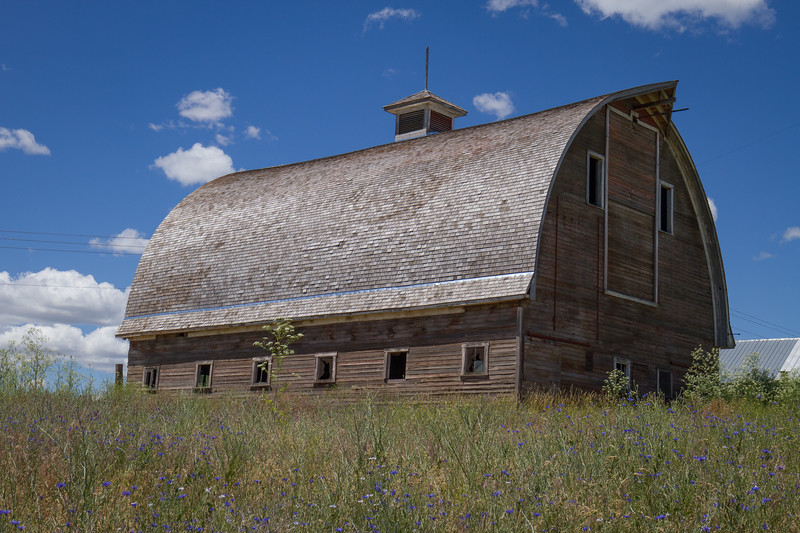 Barn on the hill -Colfax, WA