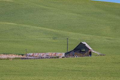 Litle Barn on the Prairie - The Palouse