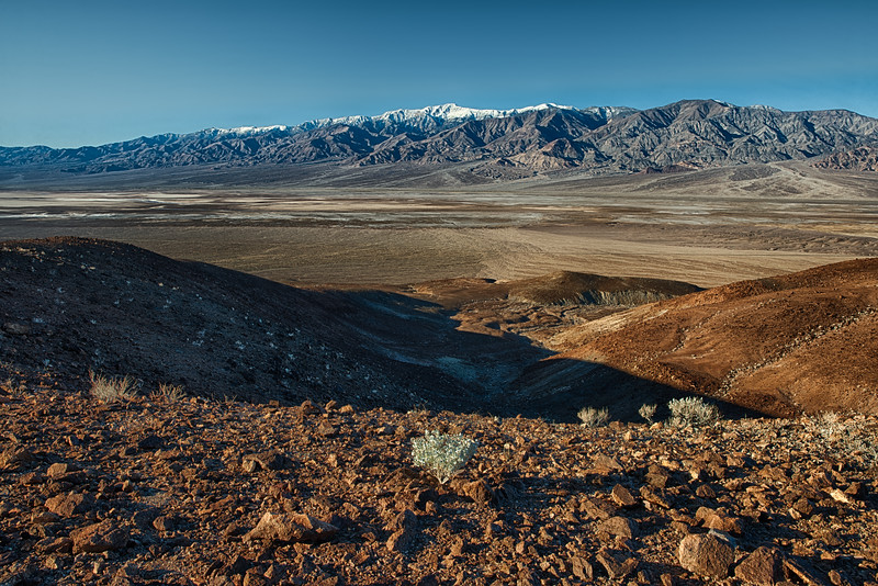 Life Abides but Barely, Death Valley National Park, California, 9-December-2019