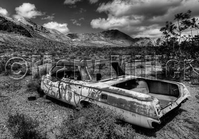 Abandoned Impala