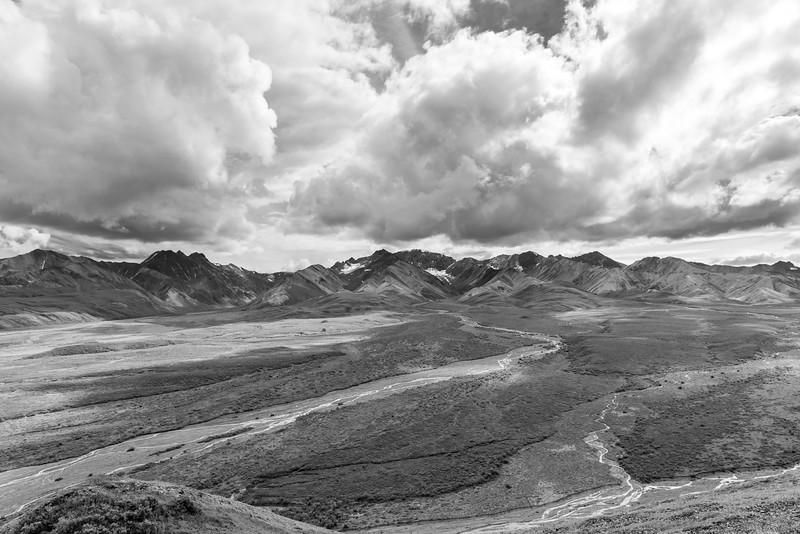 Denali National Park in Black & White