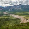 Muddy Flats & Green Tundra