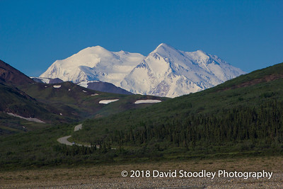 Denali from Toklat River
