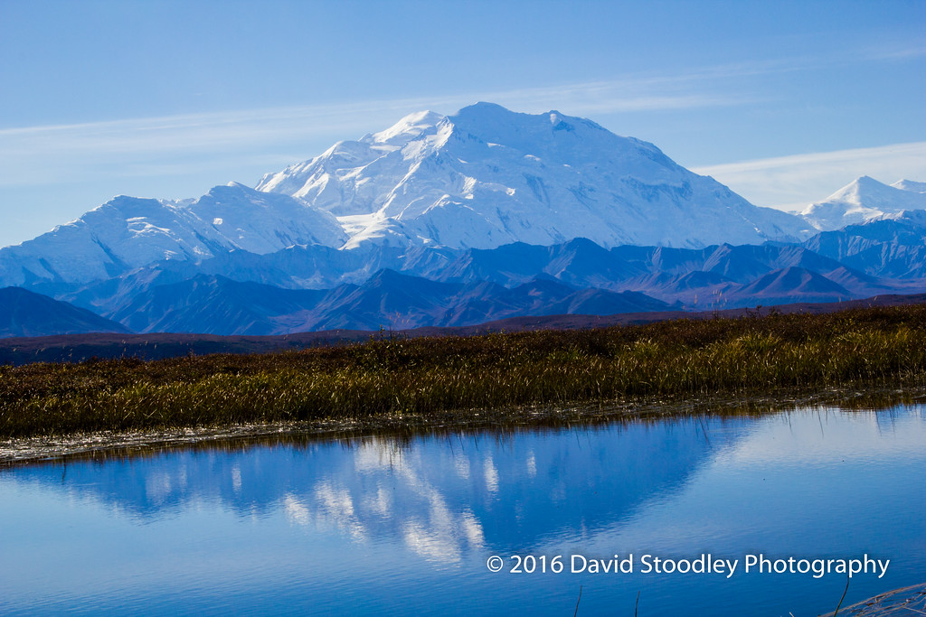 """Denali - """"The Great One"""""""