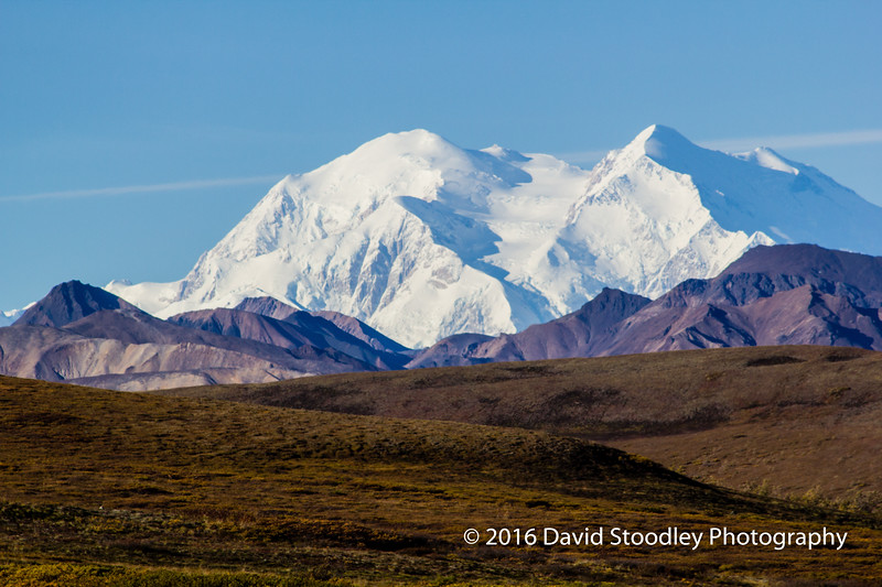 "Denali - ""The Great One"""