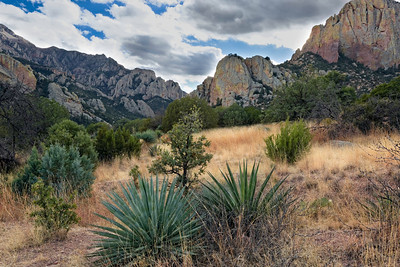 Chiricahua Mountains, Portal, Arizona