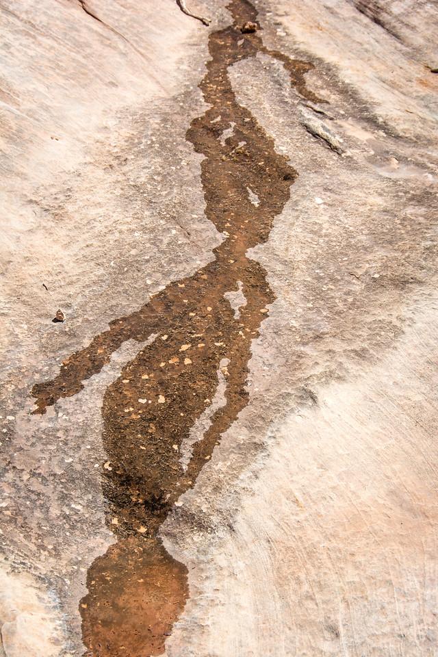 Desert Figures