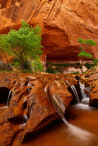 Coyote Gulch Escalante National Monument, Utah
