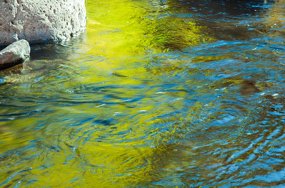 Green Reflections in stream, Oak Creek Canyon Az.
