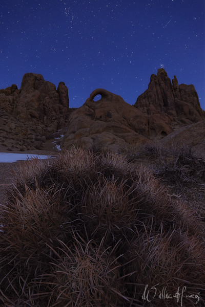 The Watchful Eye Alabama Hills, California   A barrel cactus sits at the base of an arch known as the Eye of Alabama Hills. The ground was lit by moonlight and the sky retained its blue from the tail end of twilight.