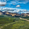 Denali National Park, AK.<br /> July 7, 2010.