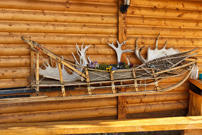 A beautiful sled collage at the Husky Homestead. Denali, AK. July 6, 2010.