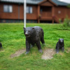 Bear and cubs sculpture.<br /> On the grounds of the Mt. McKinley Princess Wilderness Lodge.<br /> July 5, 2010.