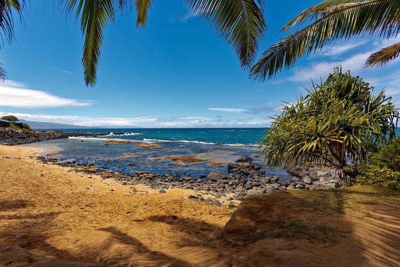 Maui:  North Shore