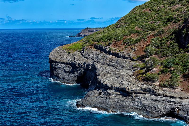 Kauai: Seabird breeding cliffs near Kilauea Lighthouse