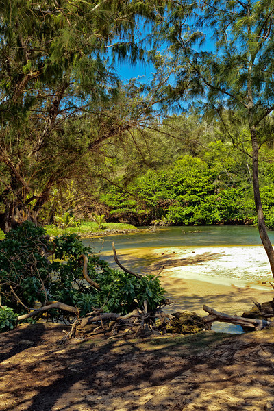 """Kauai: View of lagoon used when filming the TV show, """"Gilligan's Island."""""""