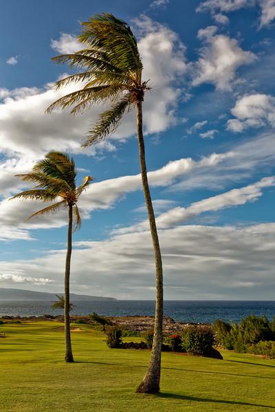 Maui:  Kapalua, western Maui (Moloka'i Island in distance).