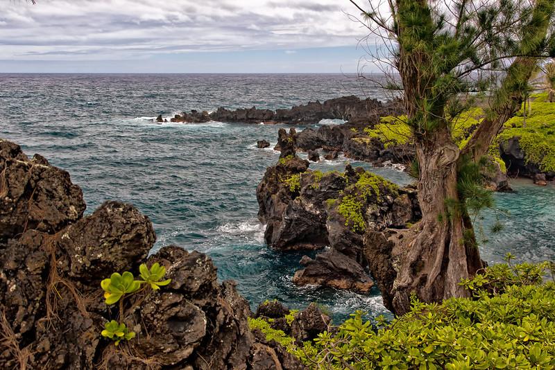 Maui:  Shoreline in the Wainapanapa State Park.