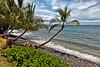 Maui:  Southern Maui shoreline.
