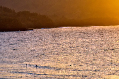 Kauai: A group of Hawaiins paddle boarding in the late afternoon on Hanalei bay.