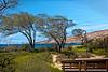 Maui:  Kahana Pond State Wildlife Sanctuary