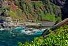 Kauai: cove adjacent to Kilauea Lighthouse.