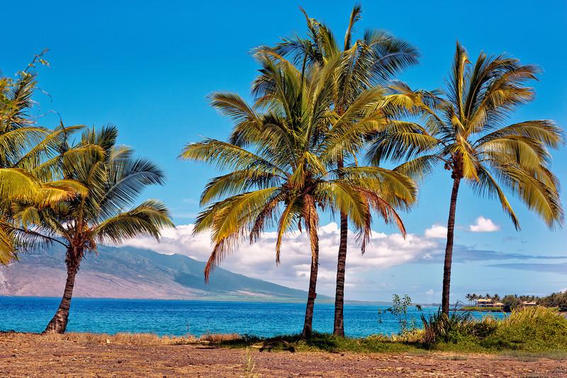 Maui:  Secluded beach near Wailea