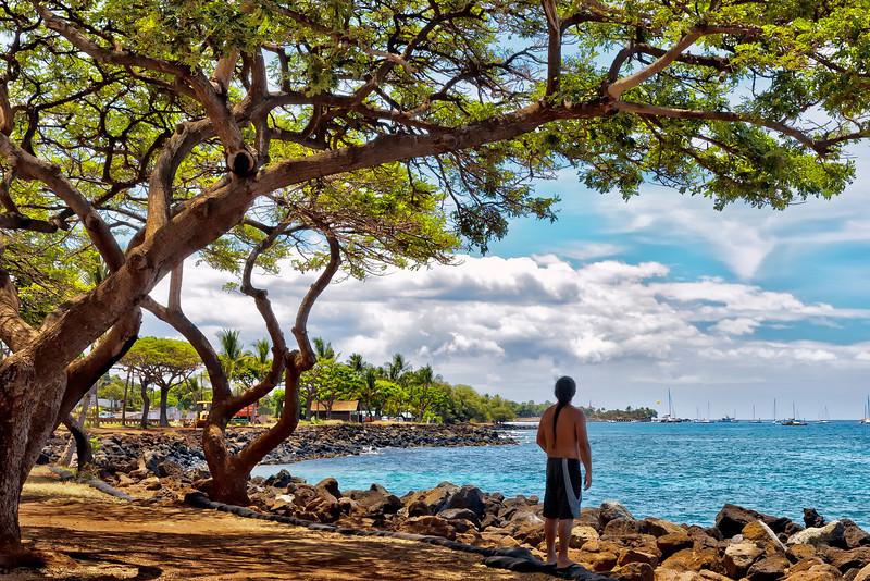 Maui:  Shoreline park looking toward Lahaina Harbor.