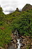 Maui:  'Iao Stream running through 'Iao Valley.
