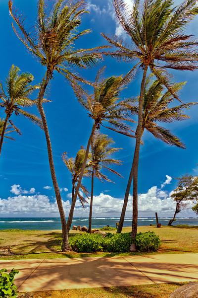 Kauai: View of beach directly behind the shops in downtown Kapaa.