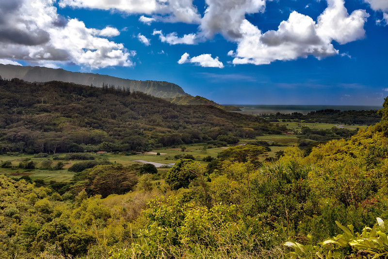 Kauai: Hanalei valley looking towards Hanalei Bay.