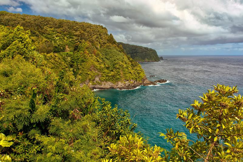 Maui:  Hana Highway overlook