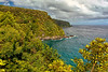 Maui:  Hana Highway overlook