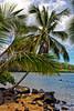 Kauai: View of a section Anini Beach.