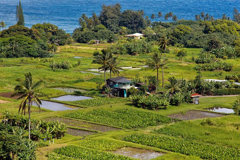 Maui:  Overlooking the Keneae Peninsula from the Hana Highway.