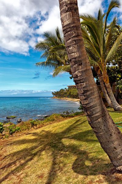 Maui:  Shoreline in Lahaina.
